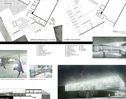 Dancehouse - Final project in architecture