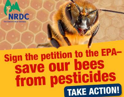 NRDC Banner Ad Campaign