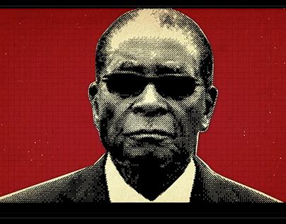 Spinfluence: No Mugabe