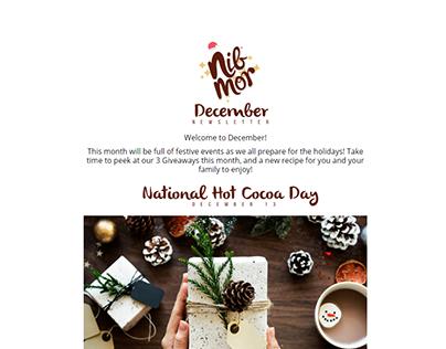 NibMor Newsletter Email Template Design