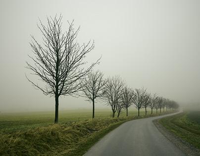 Fields & Roads Of Mecklenburg-Vorpommern II