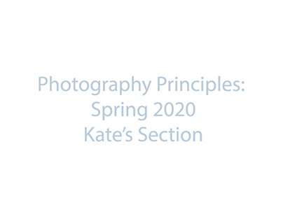 Photography Principles SP20: Kate's Section