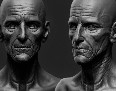 Oldman Sculpt WIP