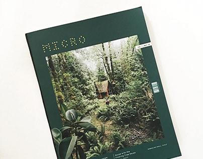 Micro Magazine