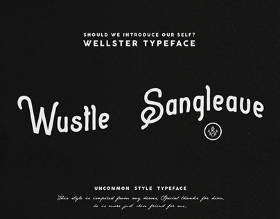 Wellster Handdrawn Typefont
