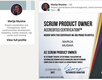 Scrum Institute Professional Scrum Masters