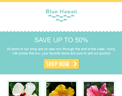 """""""Blue Hawaii"""" Responsive Email Template"""