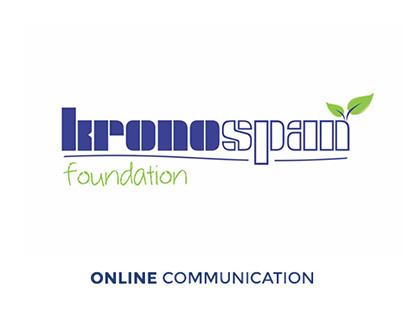 Kronospan Foundation - Web Preview