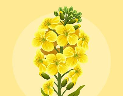 FLOWER REFORM - ANIMATION