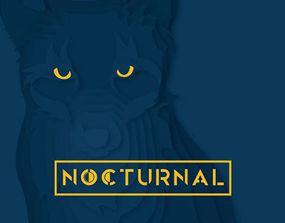 Nocturnal Video 1 - The Night City