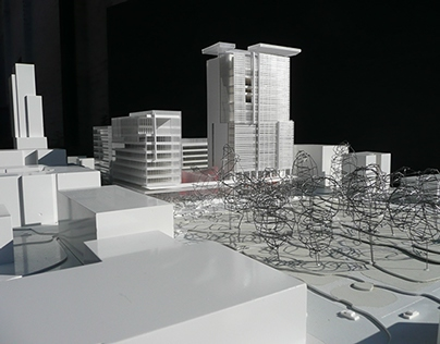 City of Raleigh Government Master Plan