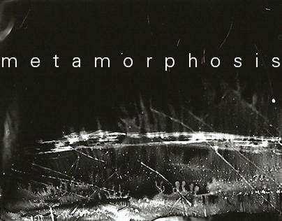Photogram Metamorphosis