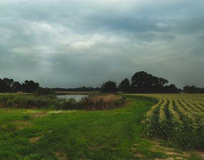 South Jersey Farms