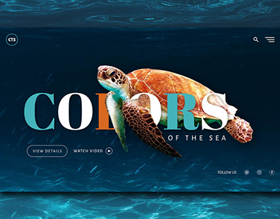Colors of the sea - landing page concept