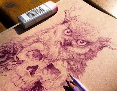 Sketchbook: Owl and Skull