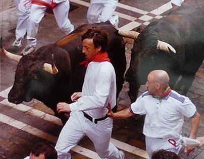 Navarra, 365 días de fiesta - 2013