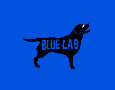 Blue Lab Productions Branding