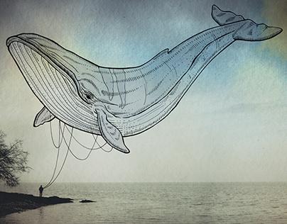 Oceanographies