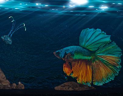 Siamese Fighting Fish | Element 3D