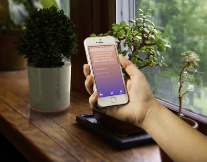 Cactus : smart care taker for your plants