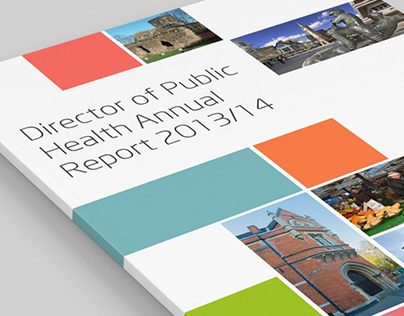 Leicester City CounciL DPH Annual Report