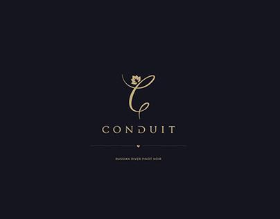 Conduit Contest, Rejected