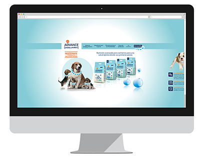 Websites + Logos