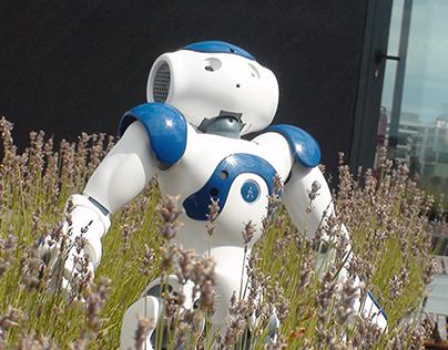 Robotics design products 2008