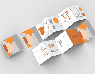 Country Data - Information Design Accordion book