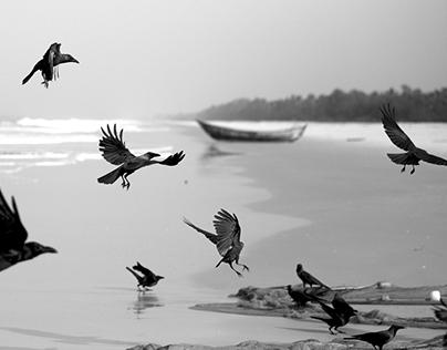 Kundapura - Fishermen