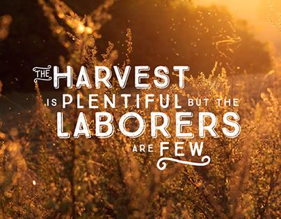 Plentiful Harvest Typography