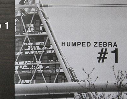 Humped Zebra #1 - Photozine