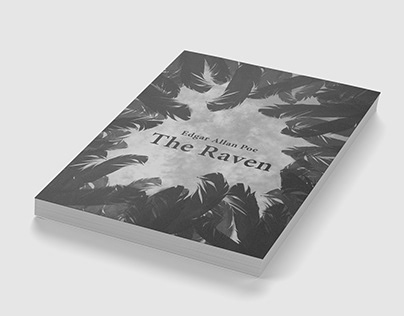 The Raven - project