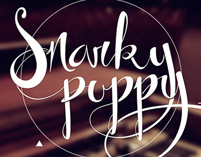 Snarky Puppy Lettering