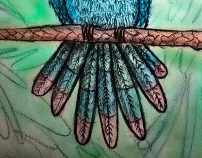 The true origin of the bird's colors