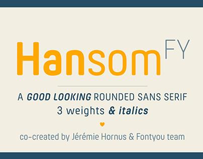 HANSOM FY