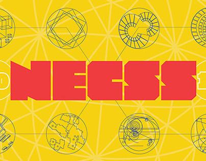 NECSS 2014 / Concept & Implementation