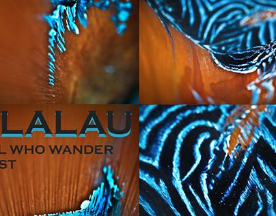 KALALAU series | art