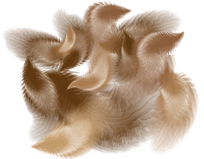 Adobe Illustrator Vector Feather Brushes
