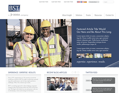BST Solutions - Dekra Insight Website