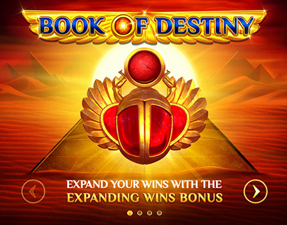 "Online slot game - ""Book of Destiny"""