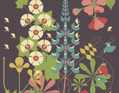 Further Botanicals