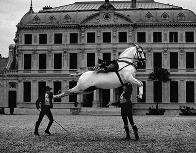 Equus: Horses of the World