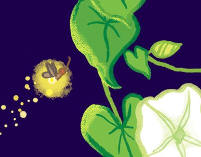 Moonflower Night Pattern