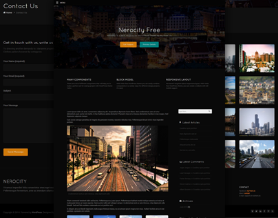 Nerocity free and dark WordPress Theme