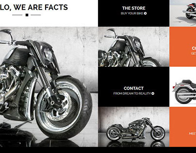 FACTS Responsive Portfolio Woocommerce WP theme