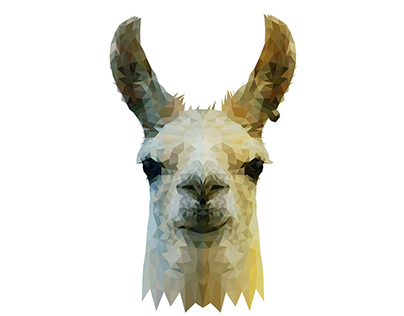 ▲ Wild Vectors and Triangles 2 - Llama