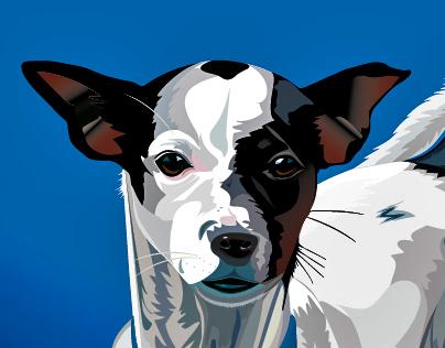 Illustrator Moments 2011