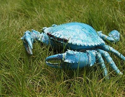 蟹 a crab