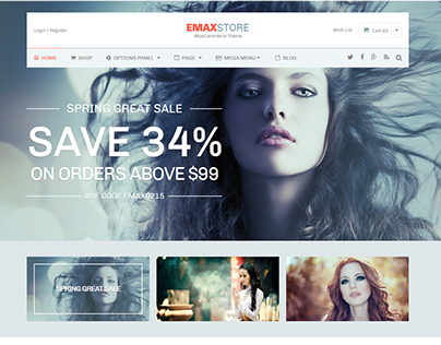 WordPress eCommerce Theme | Download Template